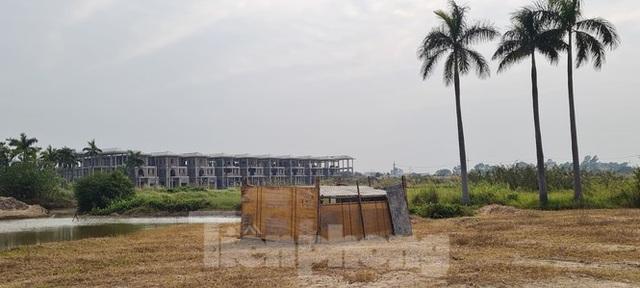 Biệt thự nuôi gà, trồng rau ngoại thành Hà Nội bất ngờ được thổi giá dựng ngược - 6