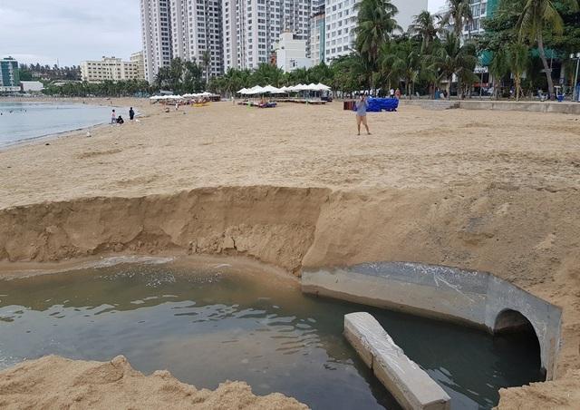 Kẹt lại vì Covid-19, nhóm khách nước ngoài nhặt rác trên bãi biển Nha Trang - 2