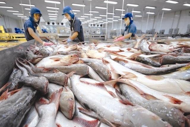 Campuchia chính thức hủy lệnh cấm nhập 4 loại cá từ Việt Nam - 1