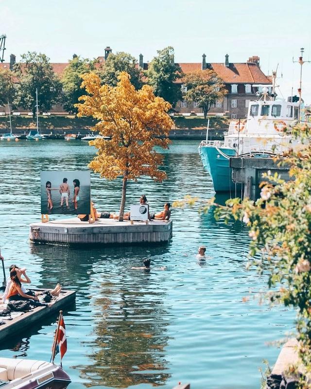 Công viên nổi ở Đan Mạch - nơi người dân chèo thuyền, bơi lội và làm nông - 5