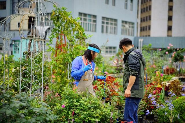 Rủ rê khắp mạng xã hội, anh chàng cùng nhóm bạn tạo vườn hoa giữa trời - 4