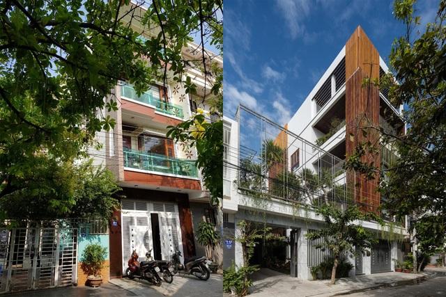 Gia đình Nha Trang đập thông 2 căn nhà thành nơi nuôi cá và trồng rau - 1