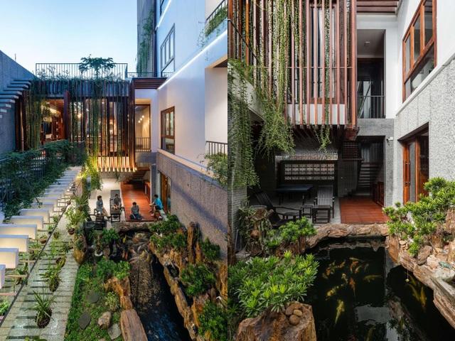 Gia đình Nha Trang đập thông 2 căn nhà thành nơi nuôi cá và trồng rau - 3