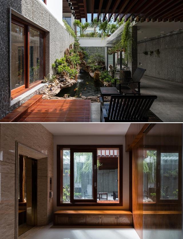 Gia đình Nha Trang đập thông 2 căn nhà thành nơi nuôi cá và trồng rau - 7