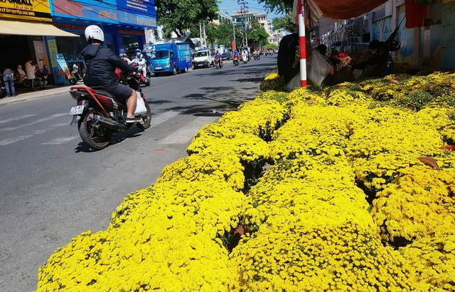 Nha Trang tourist street is filled with spring colors to welcome the New Year's Eve - 4
