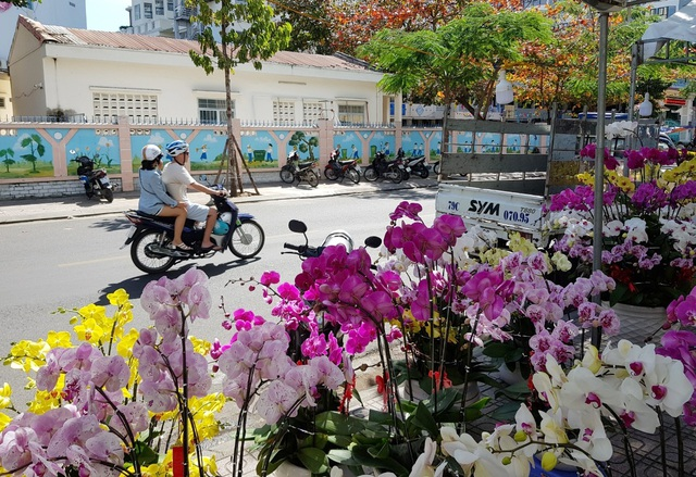 Nha Trang tourist street is full of spring colors to welcome the New Year - 5