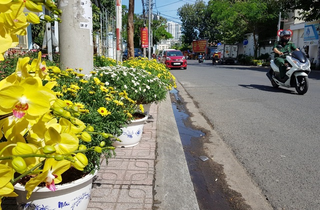 Nha Trang tourist street is filled with spring colors to welcome the New Year's Eve - 3