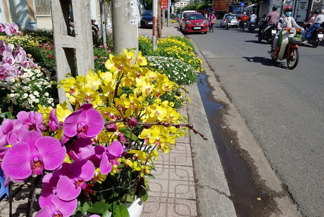 Nha Trang tourist street is filled with spring colors to welcome the New Year of the Year - 6