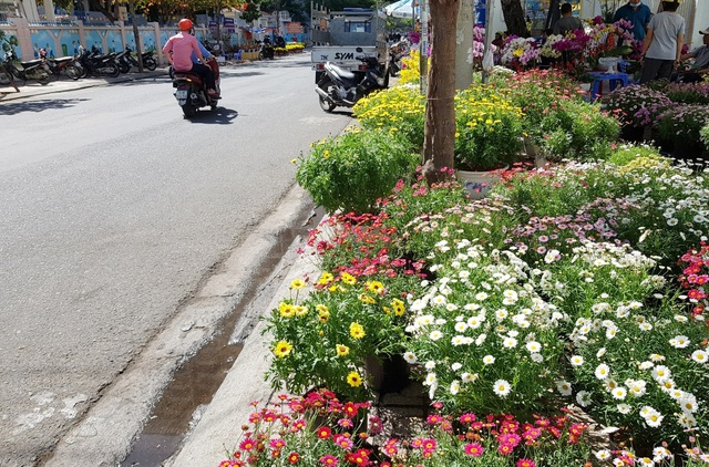 Nha Trang tourist street is flooded with spring colors to welcome the New Year's Eve - 2