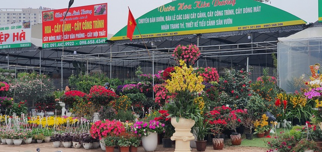 Hà Nội: Hoa đào bung nụ, tiểu thương bán hoa muốn đánh nhanh rút gọn  - 2