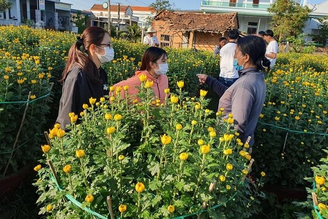 Người dân chung tay giải cứu 400 chậu hoa bị chặt phá - 1