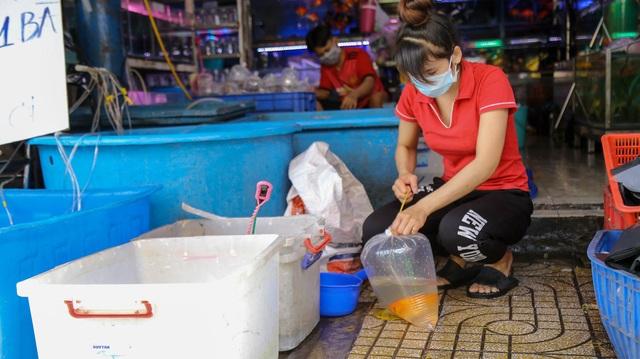 Tiểu thương bán cá chép ở TPHCM than trời vì dịch Covid-19 - 5