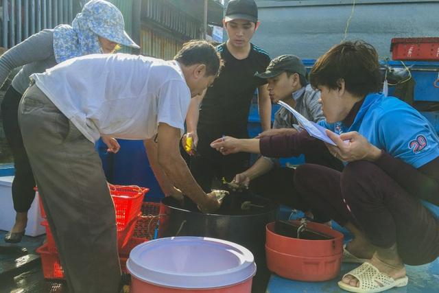 Quảng Ngãi: Nghề lặn biển tìm cá độc đắt hàng dịp Tết - 5