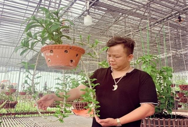 Chàng trai nghèo khởi nghiệp vươn lên làm giàu từ trồng hoa lan - 1