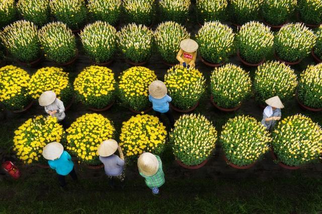 Choáng ngợp cảnh sắc tuyệt đẹp trong vựa hoa lớn nhất ở Đồng Nai - 4