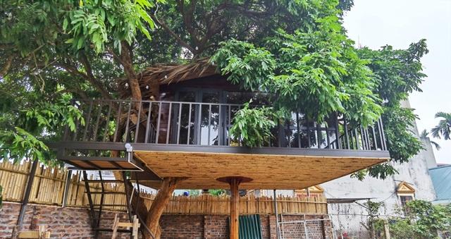 Ông bố ở Hà Nội chi trăm triệu đồng làm nhà trên cây độc đáo tặng vợ con - 3