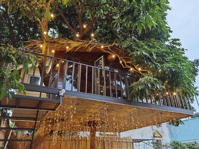 Ông bố ở Hà Nội chi trăm triệu đồng làm nhà trên cây độc đáo tặng vợ con - 8