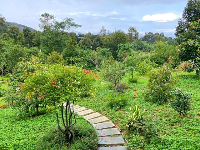 Trang trại rộng 1,5 ha, tràn ngập rau trái sạch của nữ giảng viên ở Sài Gòn - 2