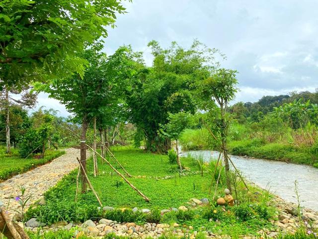 Trang trại rộng 1,5 ha, tràn ngập rau trái sạch của nữ giảng viên ở Sài Gòn - 4