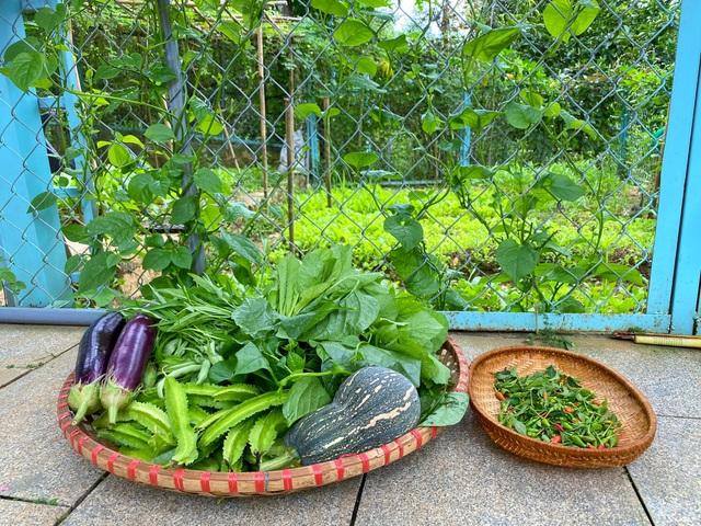 Trang trại rộng 1,5 ha, tràn ngập rau trái sạch của nữ giảng viên ở Sài Gòn - 8