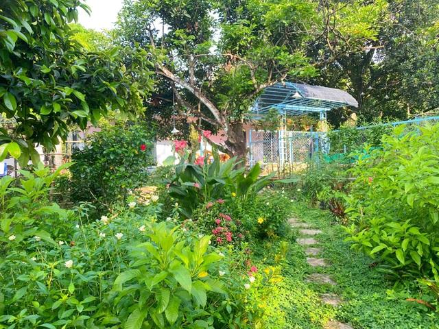 Trang trại rộng 1,5 ha, tràn ngập rau trái sạch của nữ giảng viên ở Sài Gòn - 11