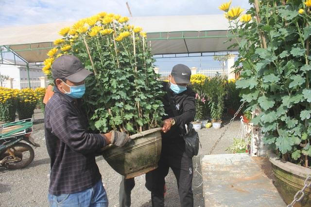 Gia Lai: Người chở hoa nhọc nhằn kiếm tiền ngày cận Tết - 2