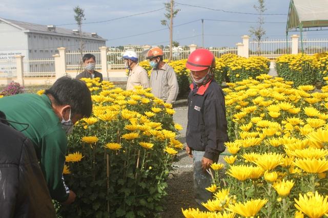 Gia Lai: Người chở hoa nhọc nhằn kiếm tiền ngày cận Tết - 11