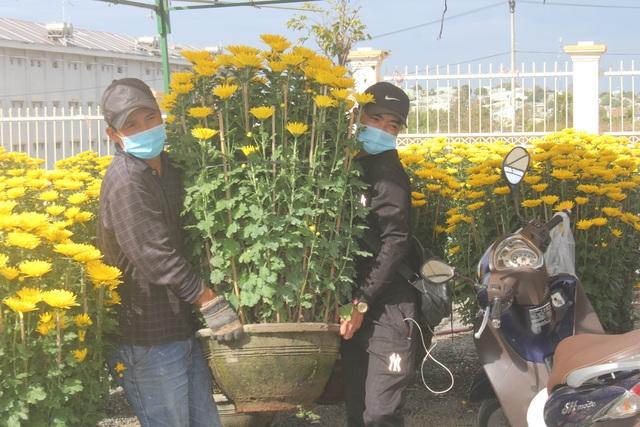 Gia Lai: Người chở hoa nhọc nhằn kiếm tiền ngày cận Tết - 6