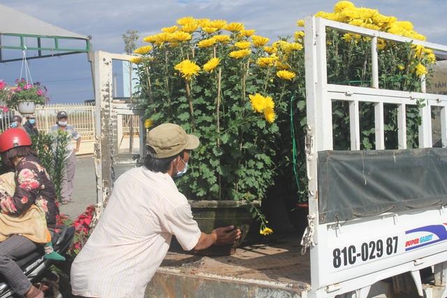 Gia Lai: Người chở hoa nhọc nhằn kiếm tiền ngày cận Tết - 4