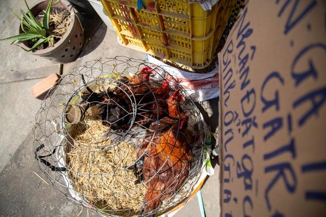 Hốt bạc từ gà, 6 người bán từ sáng đến khuya, không kịp về quê ăn Tết - 11