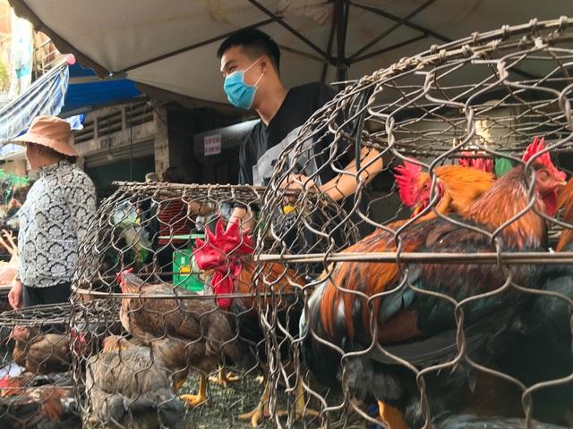 Hốt bạc từ gà, 6 người bán từ sáng đến khuya, không kịp về quê ăn Tết - 8