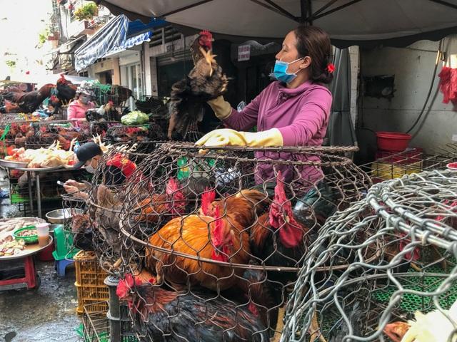 Hốt bạc từ gà, 6 người bán từ sáng đến khuya, không kịp về quê ăn Tết - 3