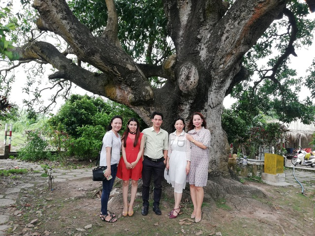 An old mango for 300 years in the land of Prince Bac Lieu 5 people hugging the tree's trunk not all - 9