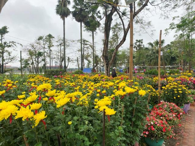 Chợ hoa xuân Hội An không ế ẩm như dự đoán; Huế người bán nhiều hơn mua - 5
