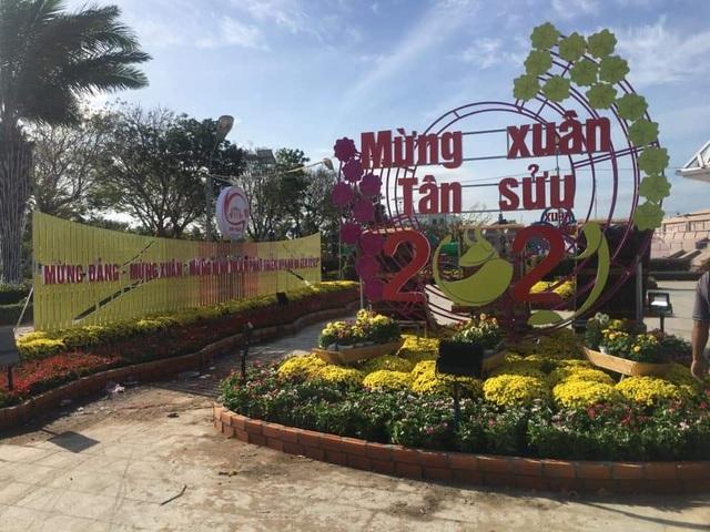 Ninh Thuận: Hoa không về thành phố, nông dân chở ra đường bán - 1