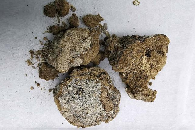 Phát hiện kem dưỡng da 2.700 năm dùng cho nam giới trong mộ quý tộc cổ đại - 2