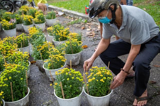 Chợ hoa Xuân ngày cuối năm: Bán tháo đồng giá - 5