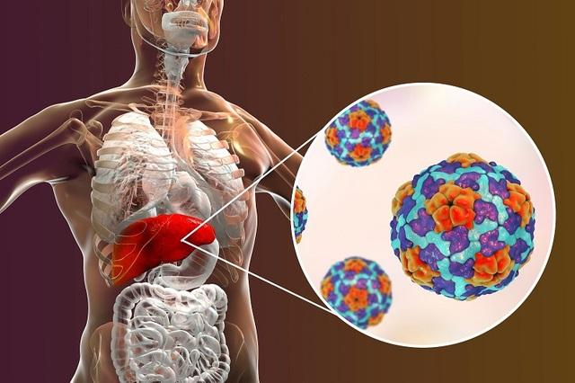 Loại virus gây viêm gan có thể sống nhiều năm ở điều kiện -20 độ C - 1