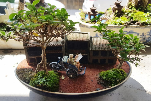 Người đàn ông Nha Trang sở hữu hàng nghìn bonsai, tiểu cảnh mini - 1