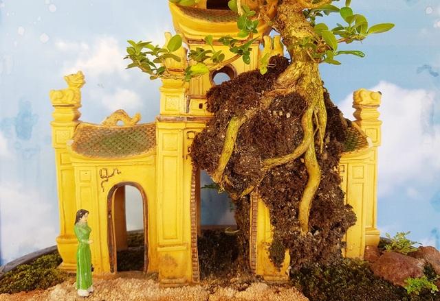 Người đàn ông Nha Trang sở hữu hàng nghìn bonsai, tiểu cảnh mini - 4