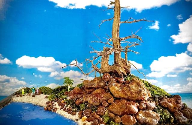 Người đàn ông Nha Trang sở hữu hàng nghìn bonsai, tiểu cảnh mini - 3