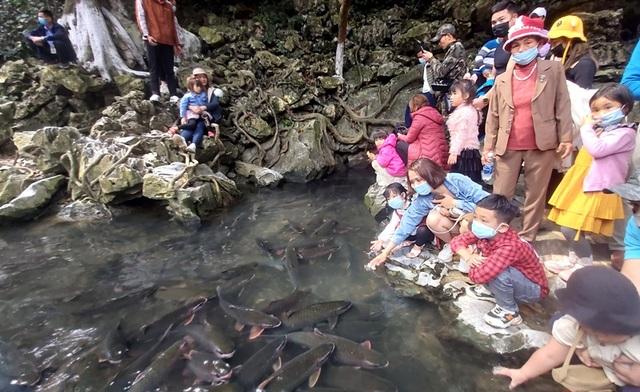 Hàng nghìn người chen chúc xem cá thần ngày đầu năm mới - 11