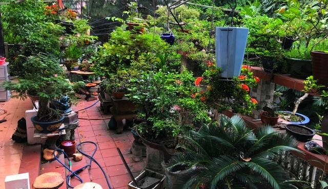 Những căn nhà phủ kín cây xanh như rừng nhiệt đới giữa phố thị tại Việt Nam - 7