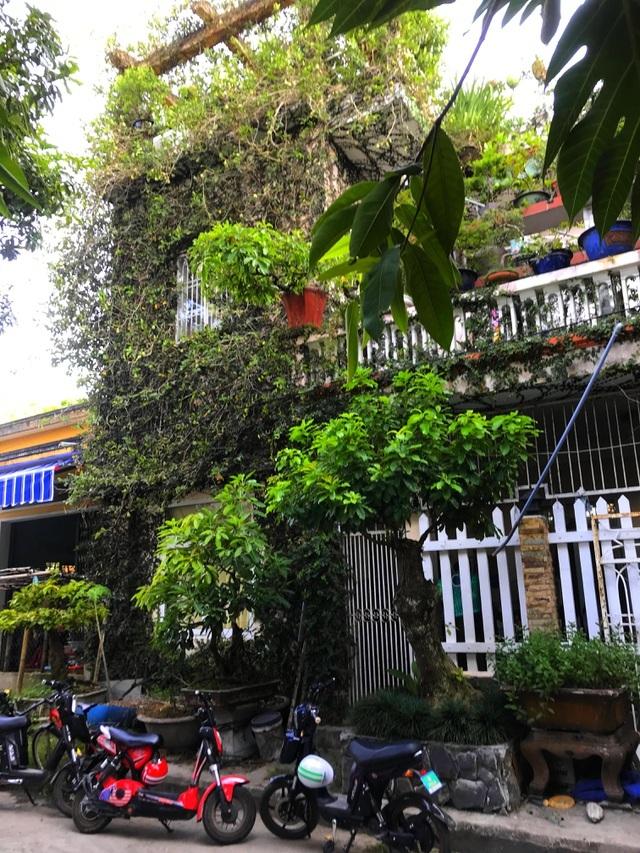 Những căn nhà phủ kín cây xanh như rừng nhiệt đới giữa phố thị tại Việt Nam - 9
