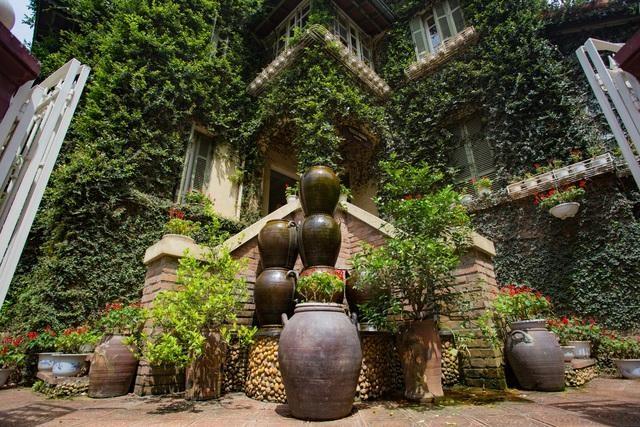 Những căn nhà phủ kín cây xanh như rừng nhiệt đới giữa phố thị tại Việt Nam - 12