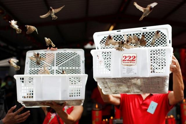 Cảnh đeo mặt nạ chống độc kho cá ở làng Vũ Đại lên báo nước ngoài - 9
