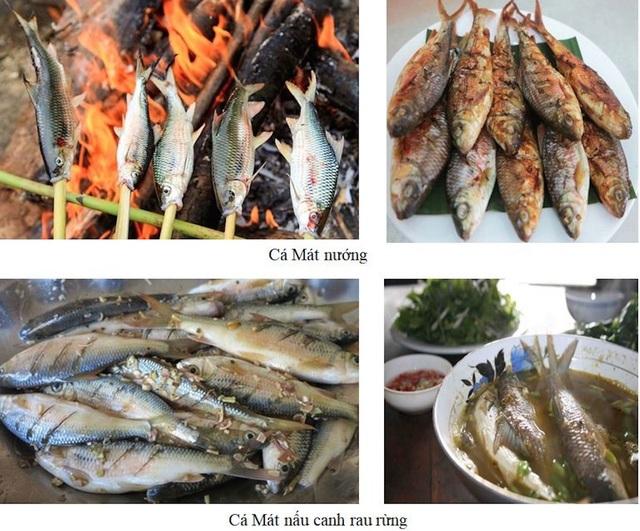 Cá Mát và những món ăn đặc sản miền Tây Nghệ An.