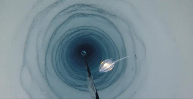 Các dạng sống bí ẩn được tìm thấy bên dưới Nam Cực - 1