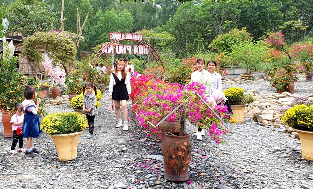Thung lũng hoa dưới chân núi ngàn Nưa - điểm check in của giới trẻ - 9