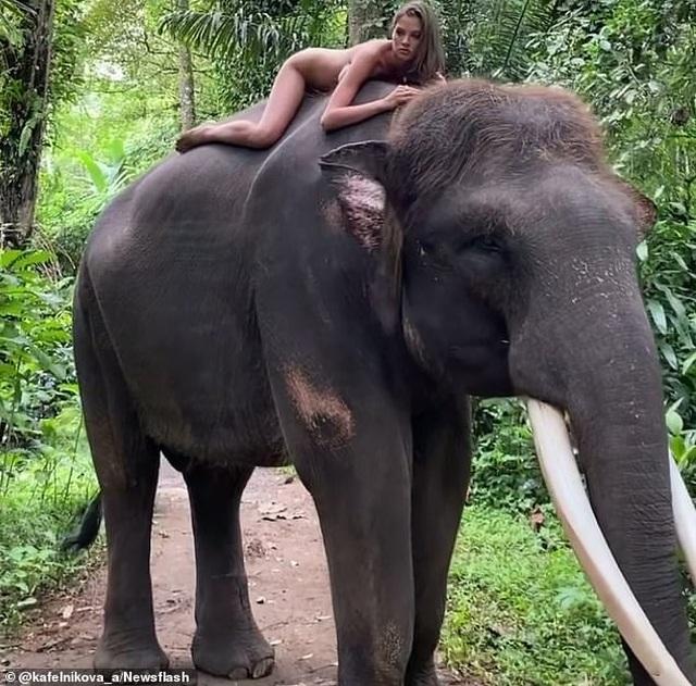 Chụp ảnh khỏa thân trên lưng voi, cô gái bị cộng đồng mạng chỉ trích - 1